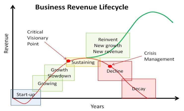 Mature business attributes
